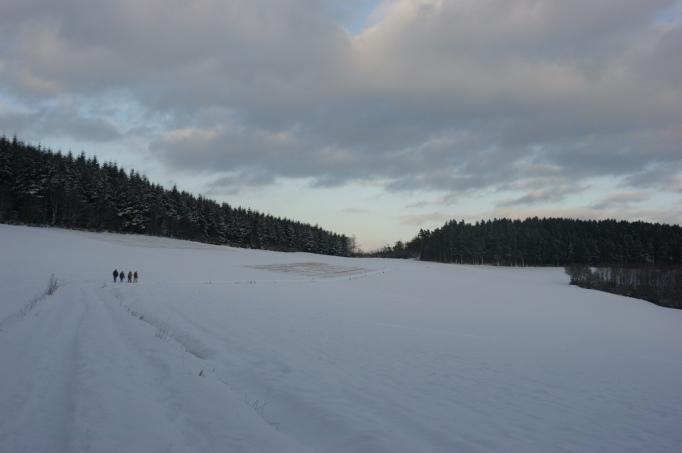 Dämmerung in der Eifel (Quelle: Hikekarin.com)