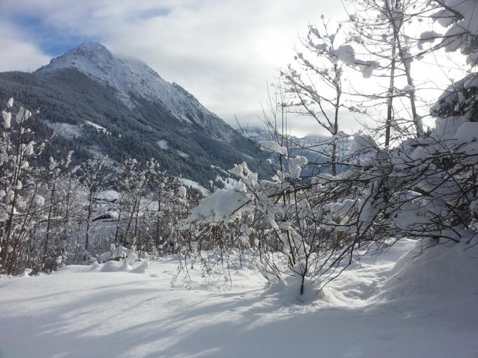 Grandiose Aussicht auf den Ennskraxn (2.410 m) im Kleinarltal (Foto: Hikekarin.com)