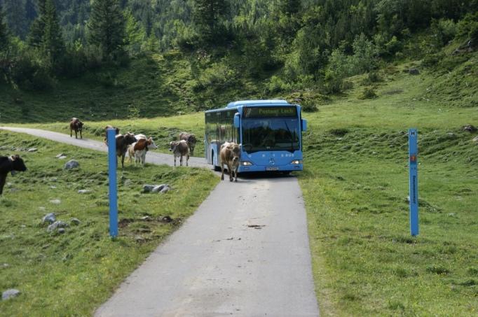 Die Fahrtzeiten sind entsprechend angepasst (Foto:Hikekarin.com)