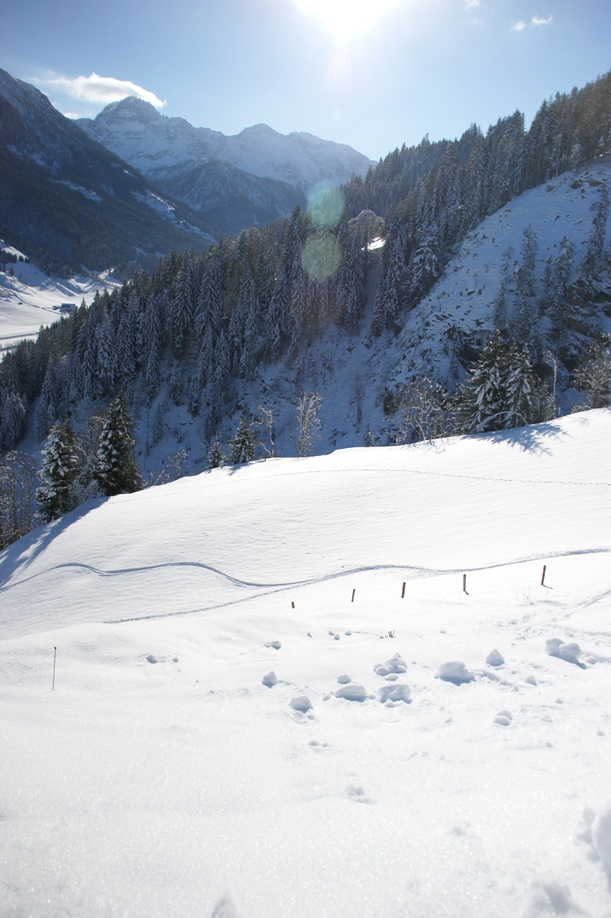 Blick hinunter auf Tourenski- und Schneeschuhspuren (Foto: hikekarin.com)