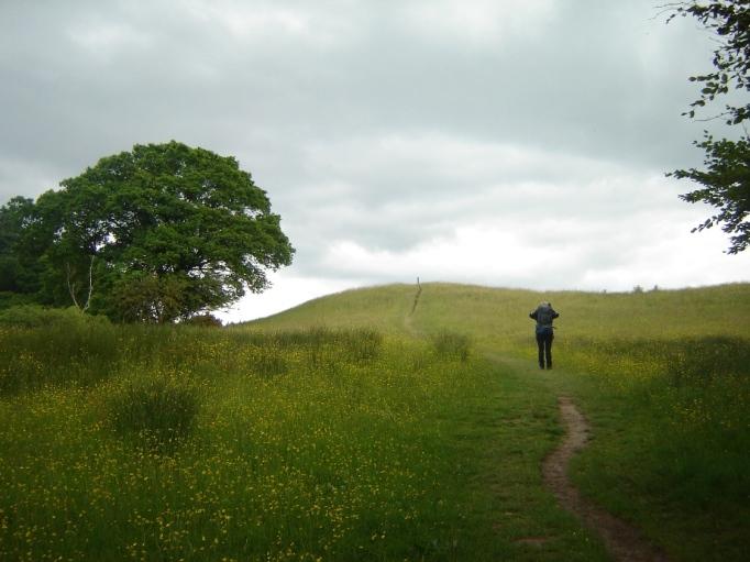 Auf dem West-Highland-Way nach Drymen (Foto: Hikekarin.com)