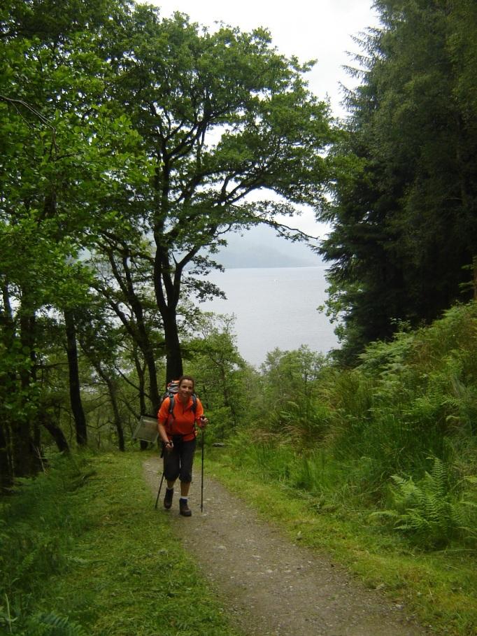 Da wanderte ich auf dem WHW dahin... (Foto: Hikekarin.com)