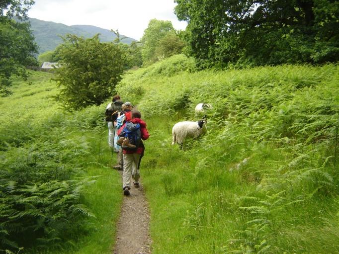Mensch und Schaf - eine schöne Begegnung (Foto: Hikekarin.com)