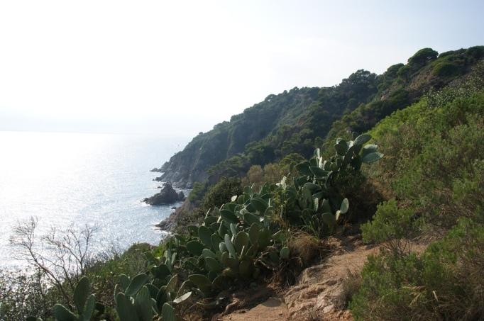 Aussichtsreich - der Camin de Ronda südlich Tossa de Mar (Foto: Hikekarin.com)