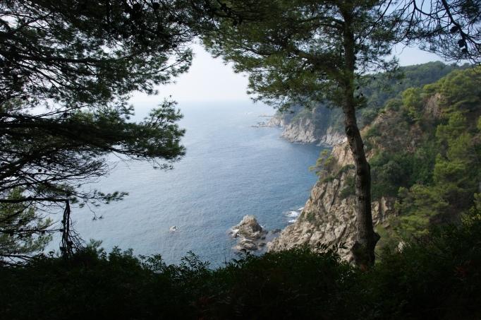 Bewundernswert: Pinienwälder auf den Felsenklippen (Fotot: Hikekarin.com)