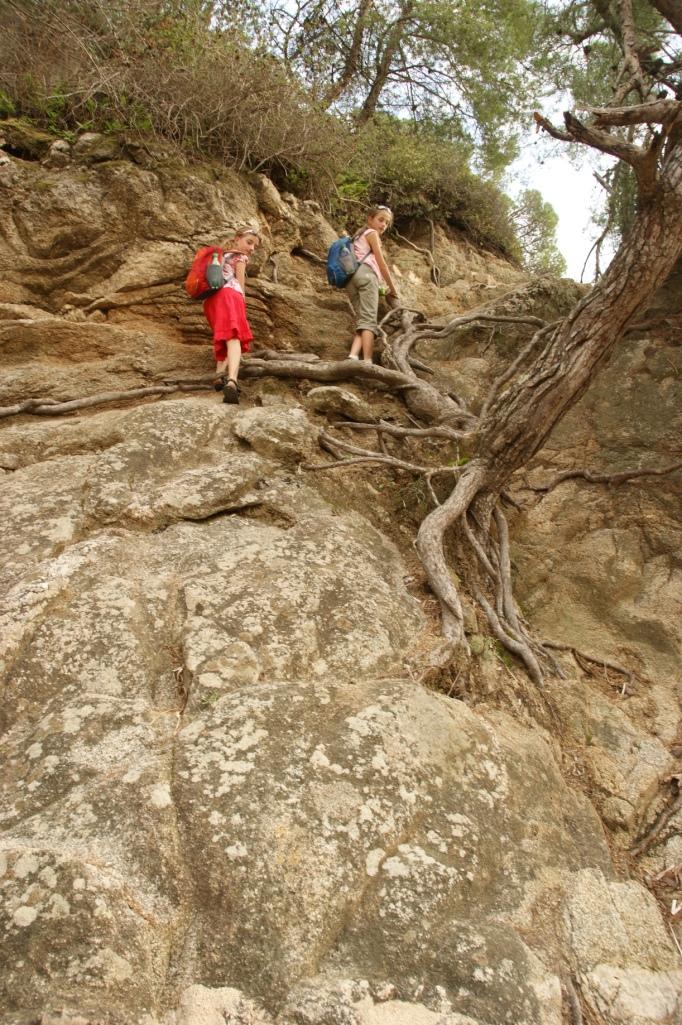Wo Bäume wachsen, können auch Kinder klettern (Foto: Hikekarin.com)