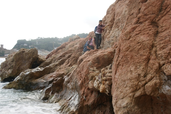 Riesenspaß macht die Klettervariante direkt am Fels entlang (Foto: Hikekarin.com)
