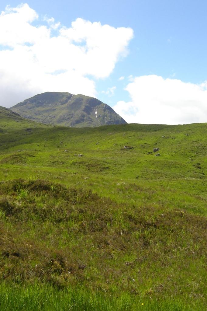 Linkerhand einer der hohen Highlands (Foto: Hikekarin.com)