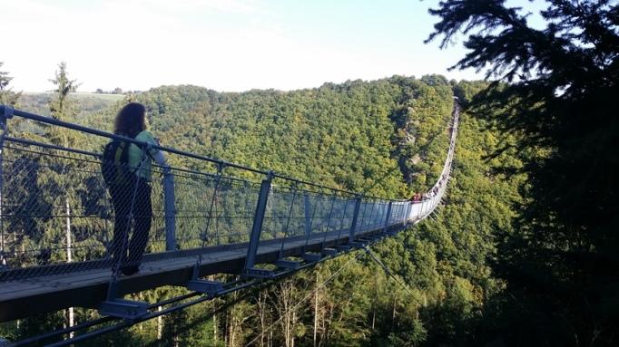 Ich bin düber - Hängeseilbrücke Geierlay (Foto: Hikekarin.com)