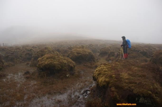 Bogland im Nebel