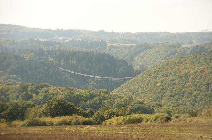 Das Tal mit Geierlay-Brücke von Weitem (Foto: Hikekarin.com)